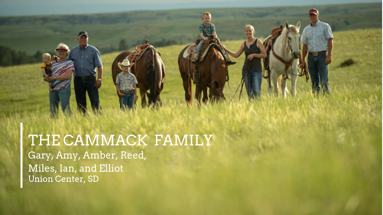 Our Amazing Grasslands Cammack